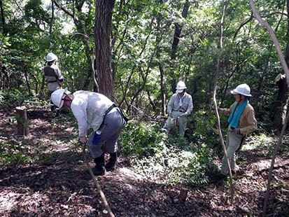 堺自然ふれあいの森の生物多様性に関する取り組み | 堺いきもの情報館 ...